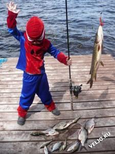 Spiderboy Оn The Lake Veljo