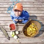 Ребенок, рыбка, ягоды и грибы